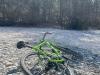 20210329 Graveln Perlacher Forst
